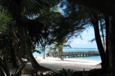 Доминиканские зарисовки. Свинско-пляжный отдых на о. Гаити