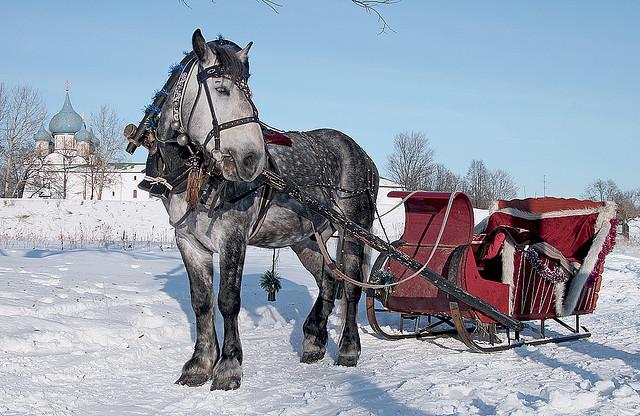 Зима в Суздале. Фото:  tonkosti.ru