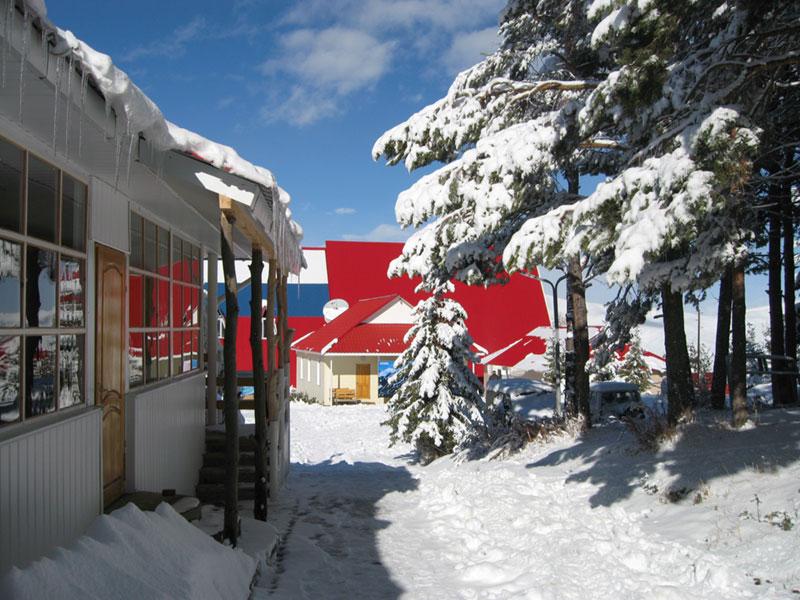 Территория базы. Фото: www.karakol-ski.kg