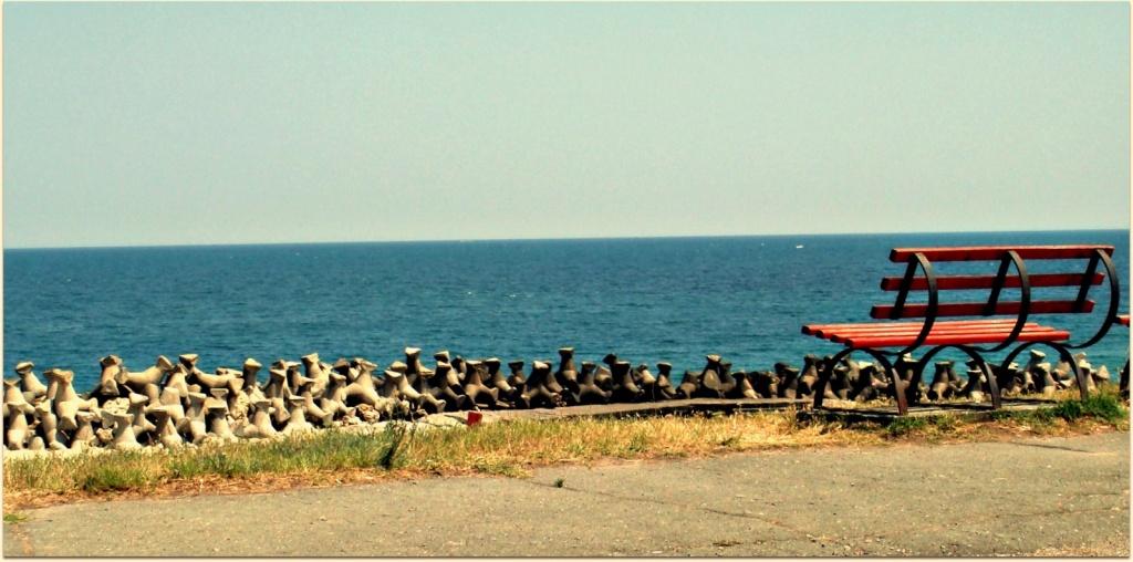 Автор: CameliaTWU. Фото:  www.flickr.com