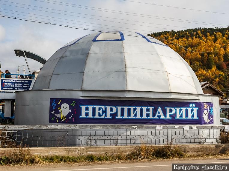 Фото с сайта  glazelki.ru