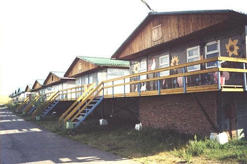 Трехместные павильоны. Фото: www.sibsau.ru