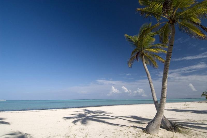 Пляж. Фото:  tonkosti.ru