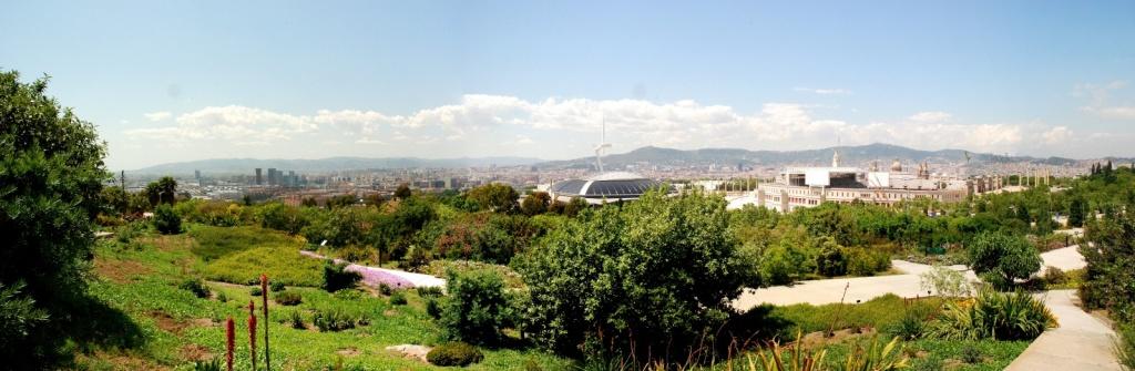 Jardin Botanico de Barcelona. Автор: Paul Hermans. Фото:   wikipedia.org
