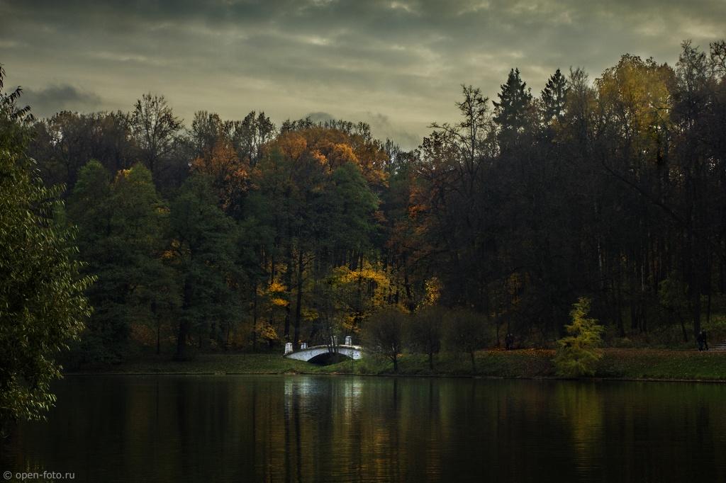 Автор: Evgeny Kolkov. Фото:  www.flickr.com