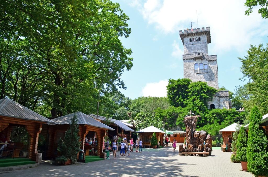Башня обзорная. Фото: Andrey Dumchev,  Википедия
