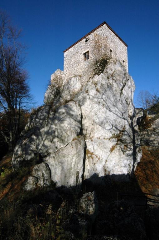 Руины рыцарского замка «Bakowiec» в Морско. Автор: ZeroJeden. Фото:   wikipedia.org