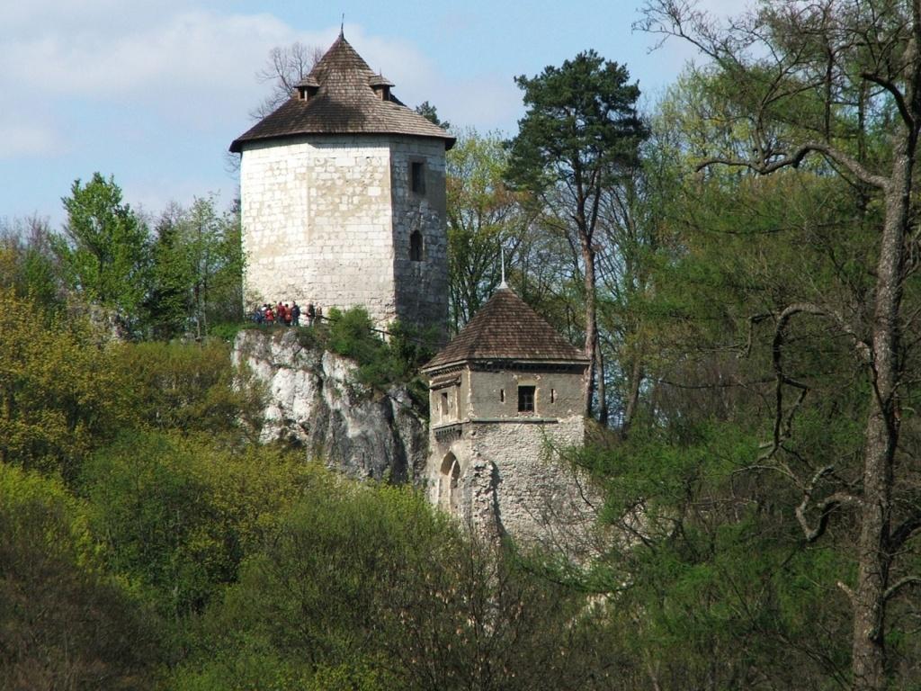 Руины королевского замка на Золотой Горе в Ойцуве. Автор: Jerzy Opiola. Фото:   wikimedia.org