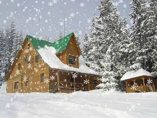 Отель «Дом Звиздарюка». Фото: dragobrat-prolisok.ru