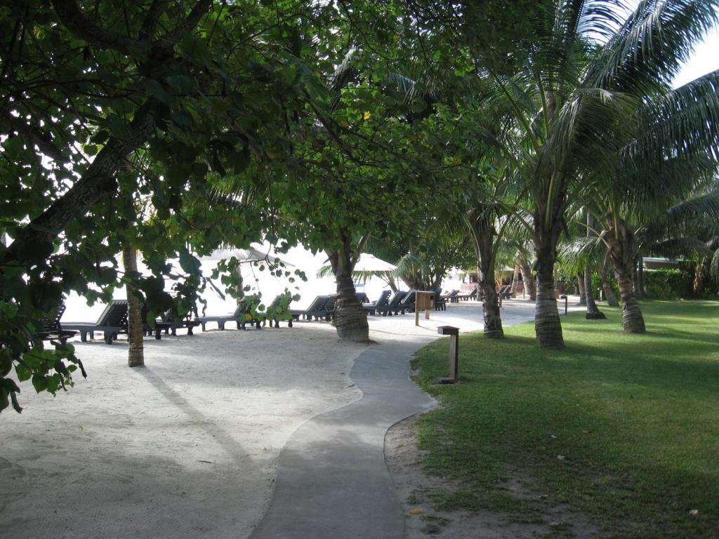 Зеленая завеса вдоль пляжа Ансе Вольберт. Автор: ReservasdeCoches.com. Фото:  www.flickr.com