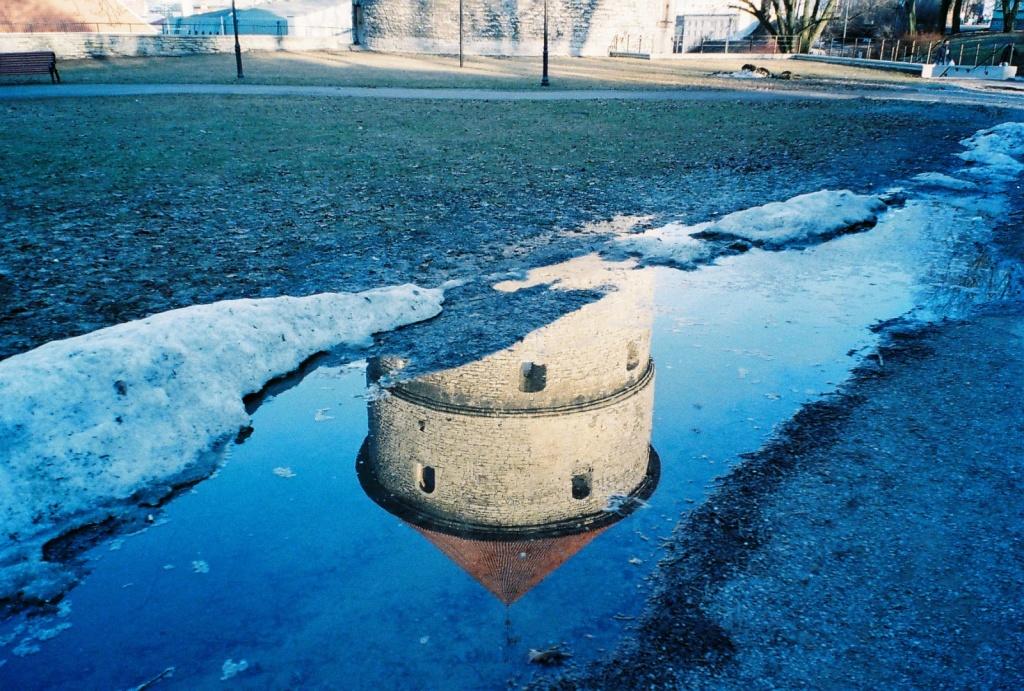 Автор: vikkies. Фото:  www.flickr.com