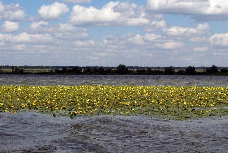 озеро Новоивановское