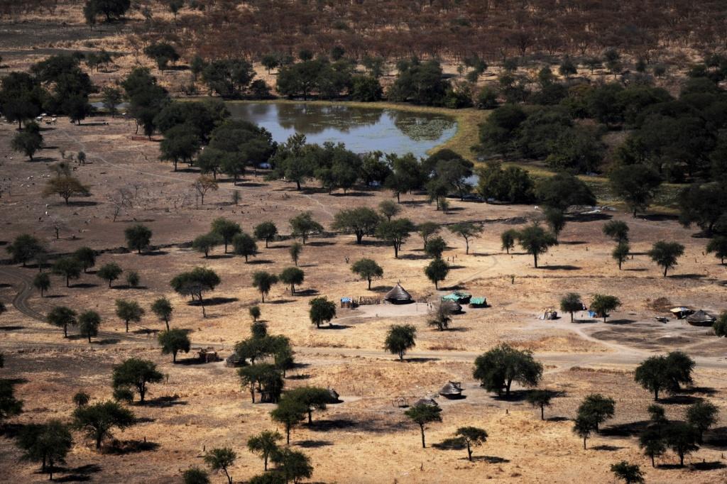 Автор: United Nations Photo. Фото:  www.flickr.com
