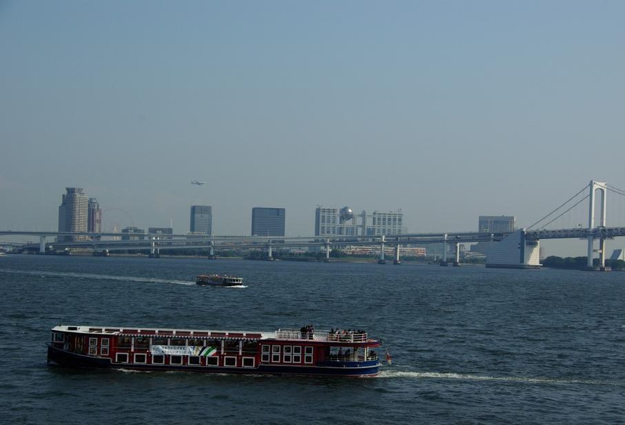 Токийский залив. Фото с сайта tonkosti.ru