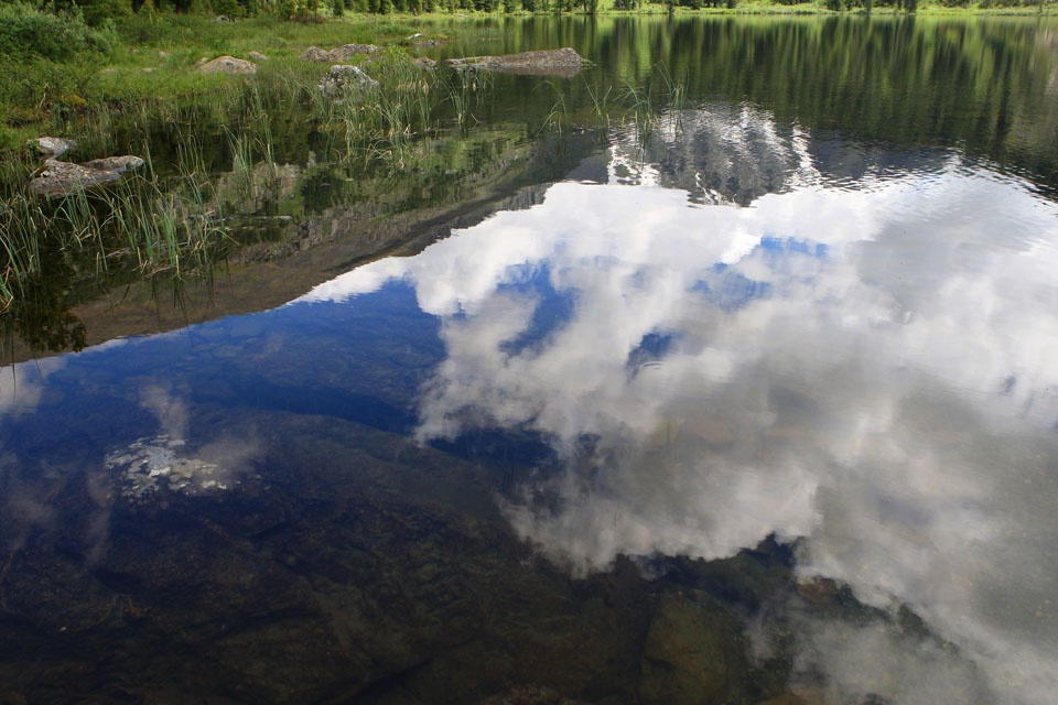 Автор фото: Лозин Ричард    www.dickhunter.narod.ru