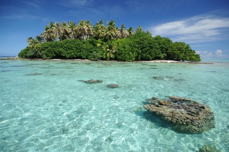 Фото:  Air Tahiti Nui