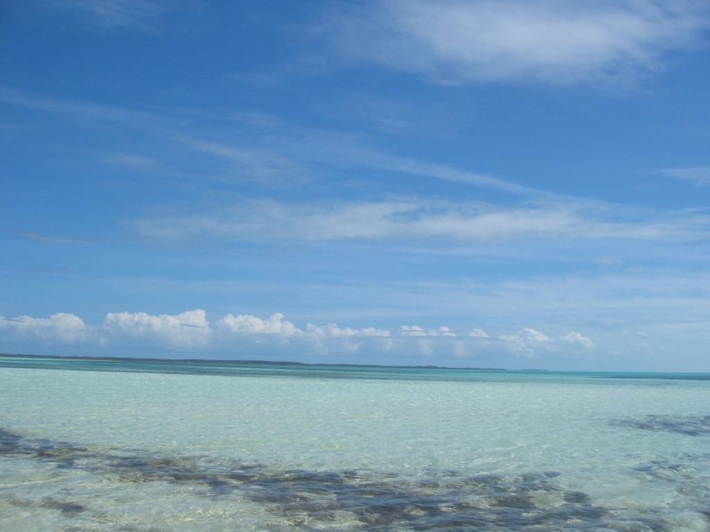 Багамы. Автор: kylewest. Фото:  www.flickr.com