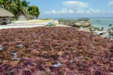Бали остров