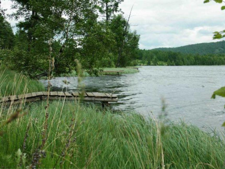 Фото:    bograd-web.ru