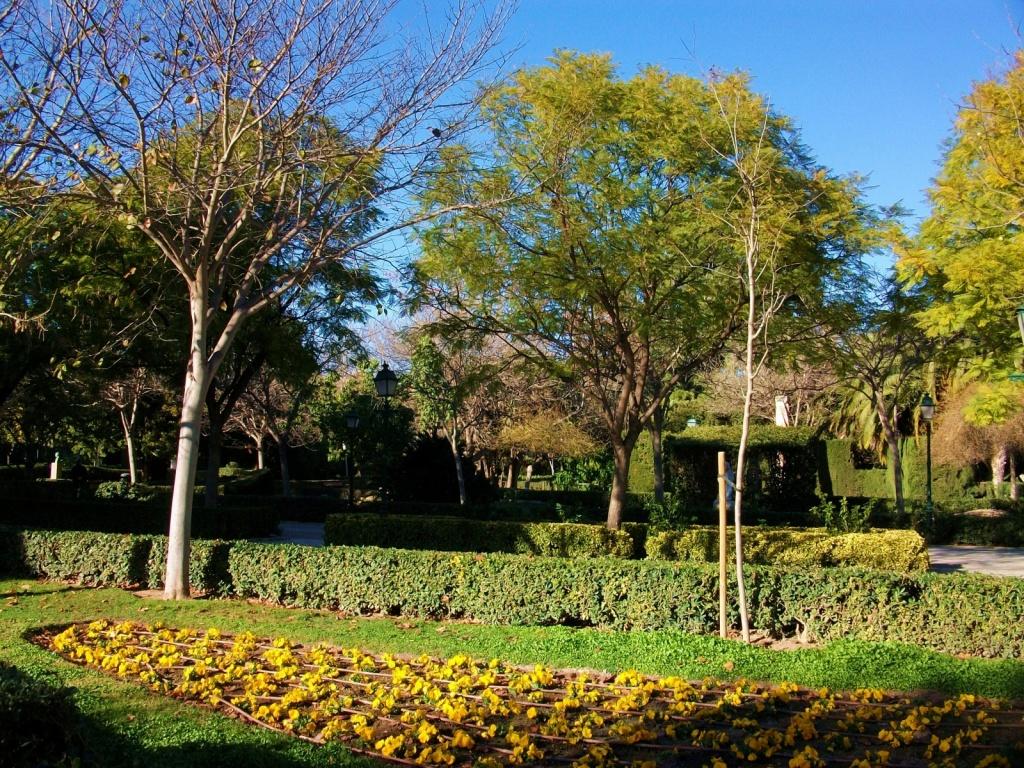 Автор: Joanbanjo. Фото:   wikipedia.org