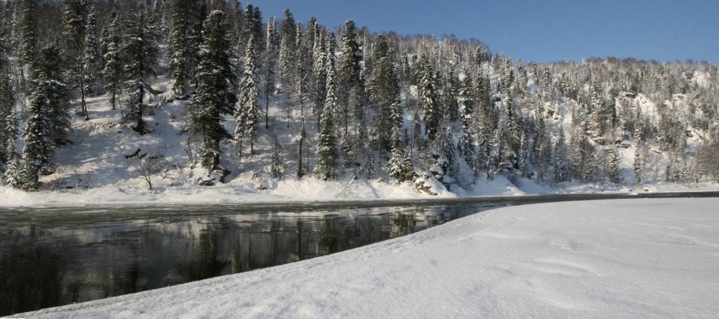 "Царство снега в заповеднике ""Кузнецкий Алатау"""