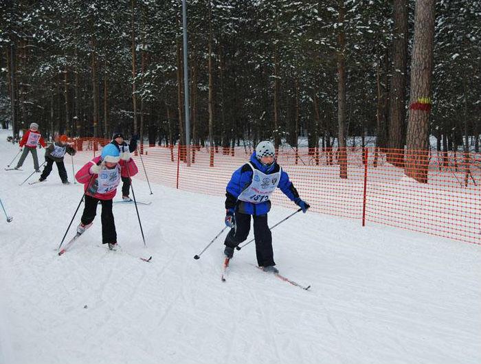 Фото: www.metelitsa-berdsk.ru