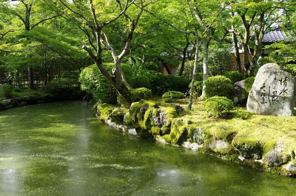 Автор: INABA Tomoaki. Фото:  www.flickr.com