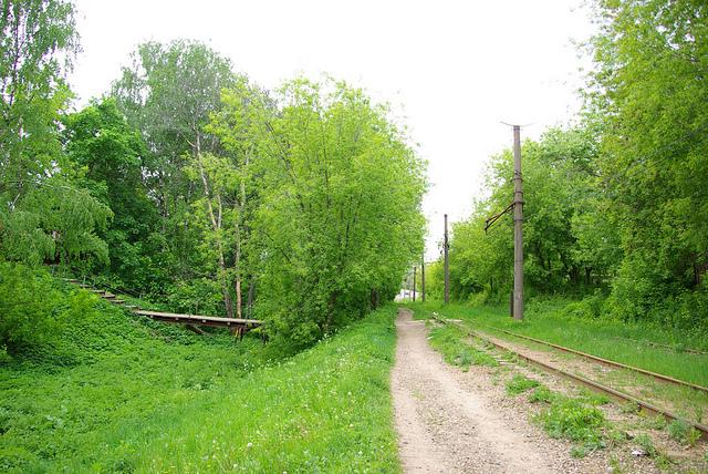 Парк. Фото:  tonkosti.ru