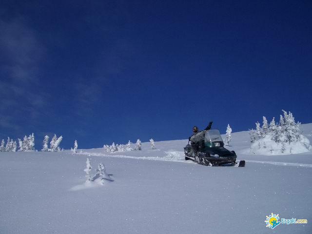 Катание на снегоходе. Фото: www.ergaki.com