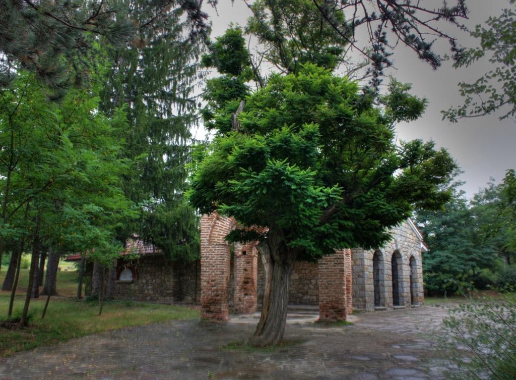 Автор: Klearchos Kapoutsis. Фото:  www.flickr.com