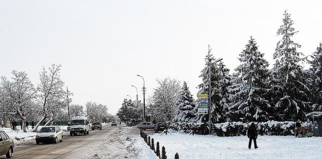 Фото:   tonkosti.ru