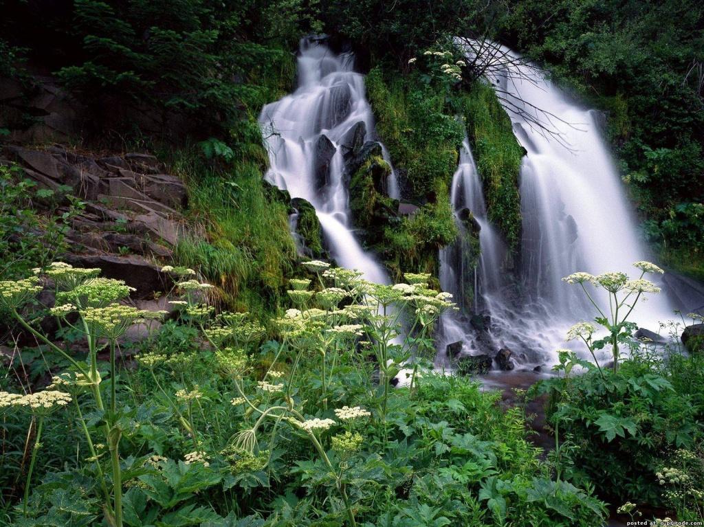 Пшадские водопады. Фото:  www.o-prirode.com
