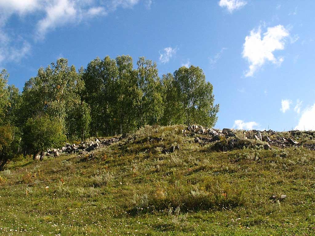 Каменистая степь. Автор фото: Балацкий Н. Н.    www.balatsky.ru