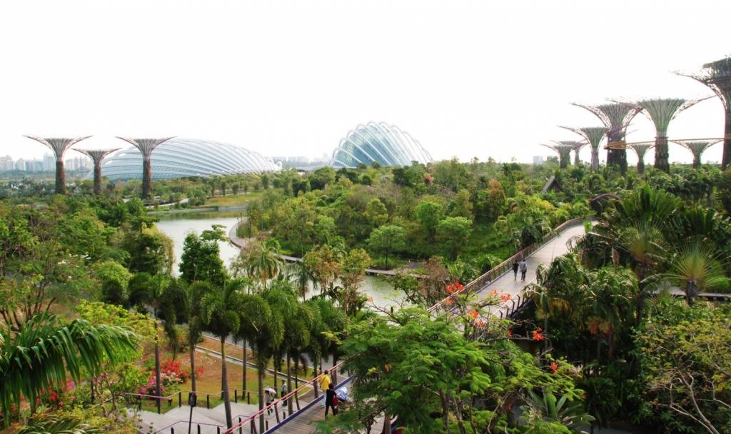 Вид на парк «Сады у залива». Автор: LWYang. Фото:  www.flickr.com