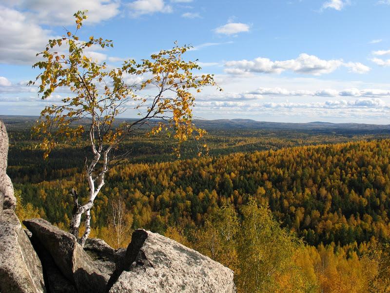 Осеннее настроение. Фото: Дмитрий Карпунин