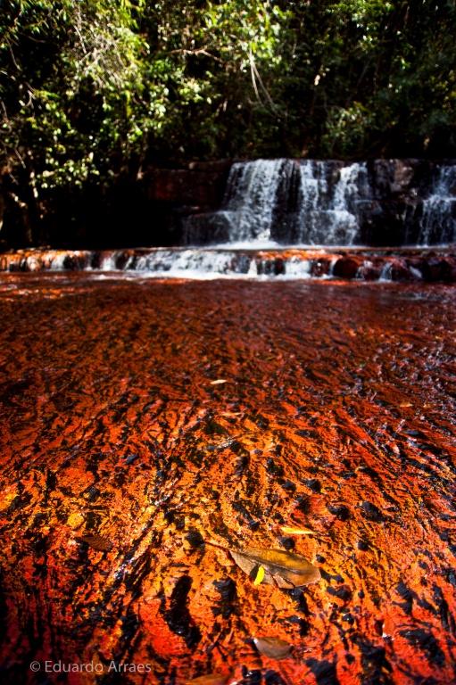Автор: Eduardo Fonseca Arraes Фото:  www.flickr.com