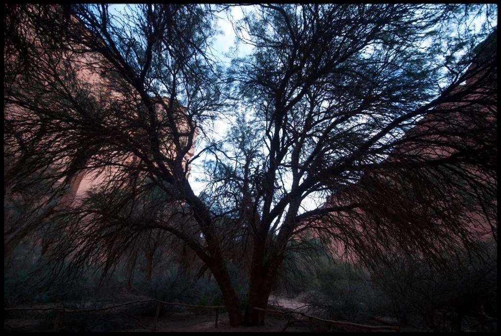 Автор: kvn.jns. Фото:  www.flickr.com