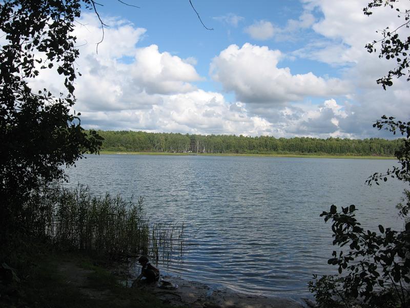 Озеро Данилово. Фото: neraston.ya.ru