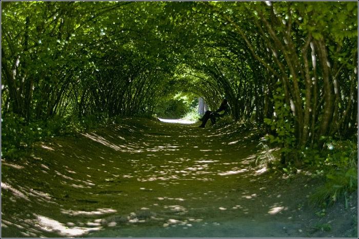 Автор: Артем Мочалов. Фото с сайта:  www.mochaloff.ru