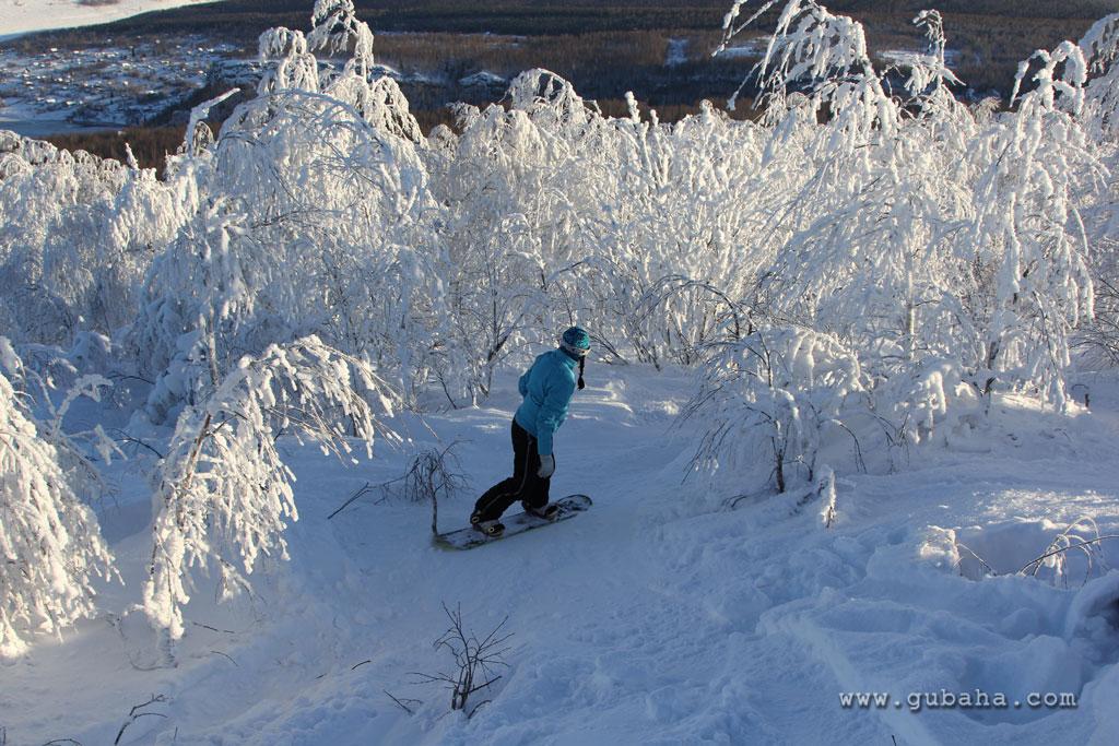 Фото: www.gubaha.com
