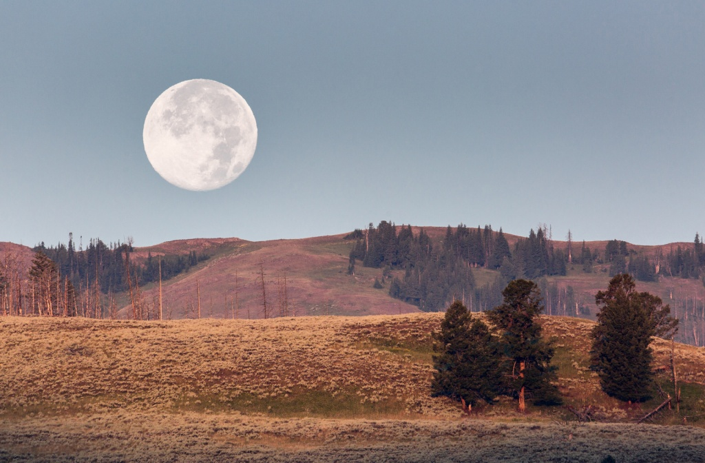 Автор: YellowstoneNPS. Фото:  www.flickr.com