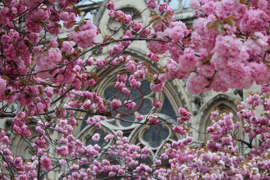 Автор: Nickay3111. Фото:  www.flickr.com