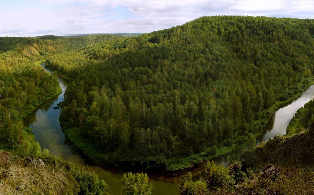 Вид с вершины скалы. Автор фото: Балацкий Н. Н.    www.balatsky.ru