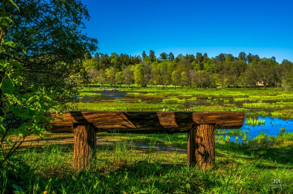 Тропы Юргордена. Автор: Tommie Hansen. Фото:  www.flickr.com