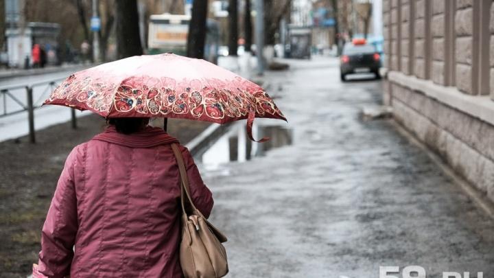 Холодно и дождливо: в течение недели температура в Перми не поднимется выше +15 °С