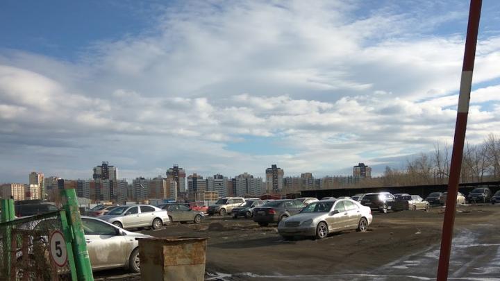 Парковки Челябинска: как автомобилистам распознать нелегала без ответственности