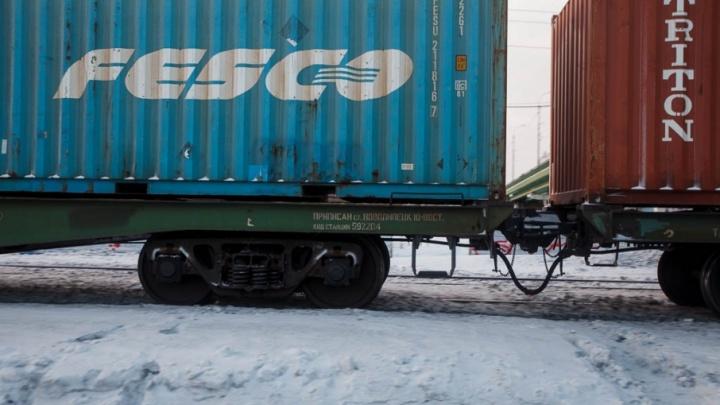 Сбитая поездом под Тюменью бабушка проигнорировала закрытый шлагбаум