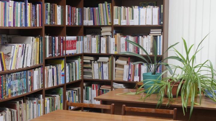 Библиотека в кармане: пермских школьников переводят на электронные книги