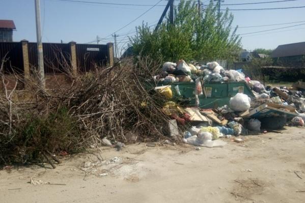 Свалка образовалась из-за недобросовестного перевозчика мусора