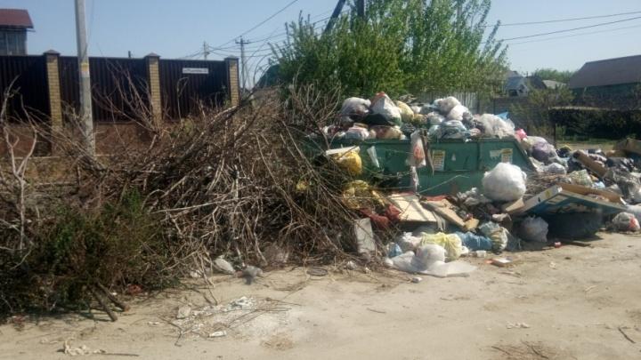 Жители частного сектора на севере Волгограда боятся сгореть от гигантской свалки